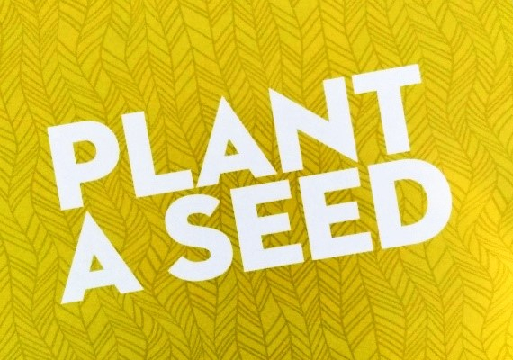 Plant a seed copy